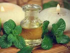 Масло мяты: состав, польза, применение