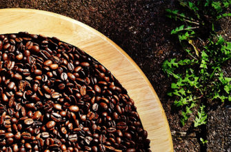 kofe kofe dlya rastenij 01